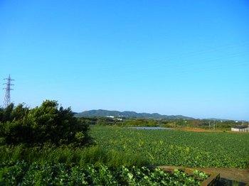 三戸浜4.JPG