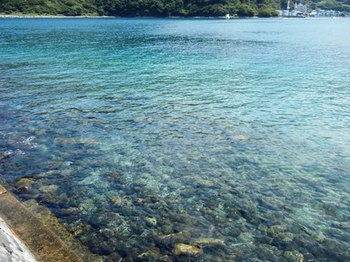 鳥居前の海.JPG